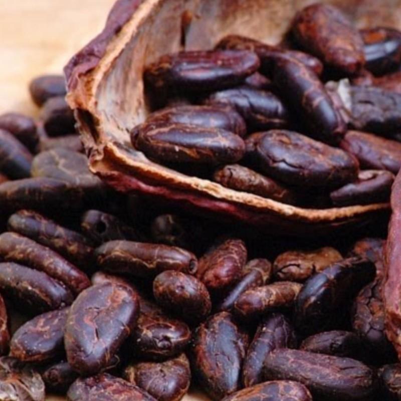 Nicaraguan Cacao Drink